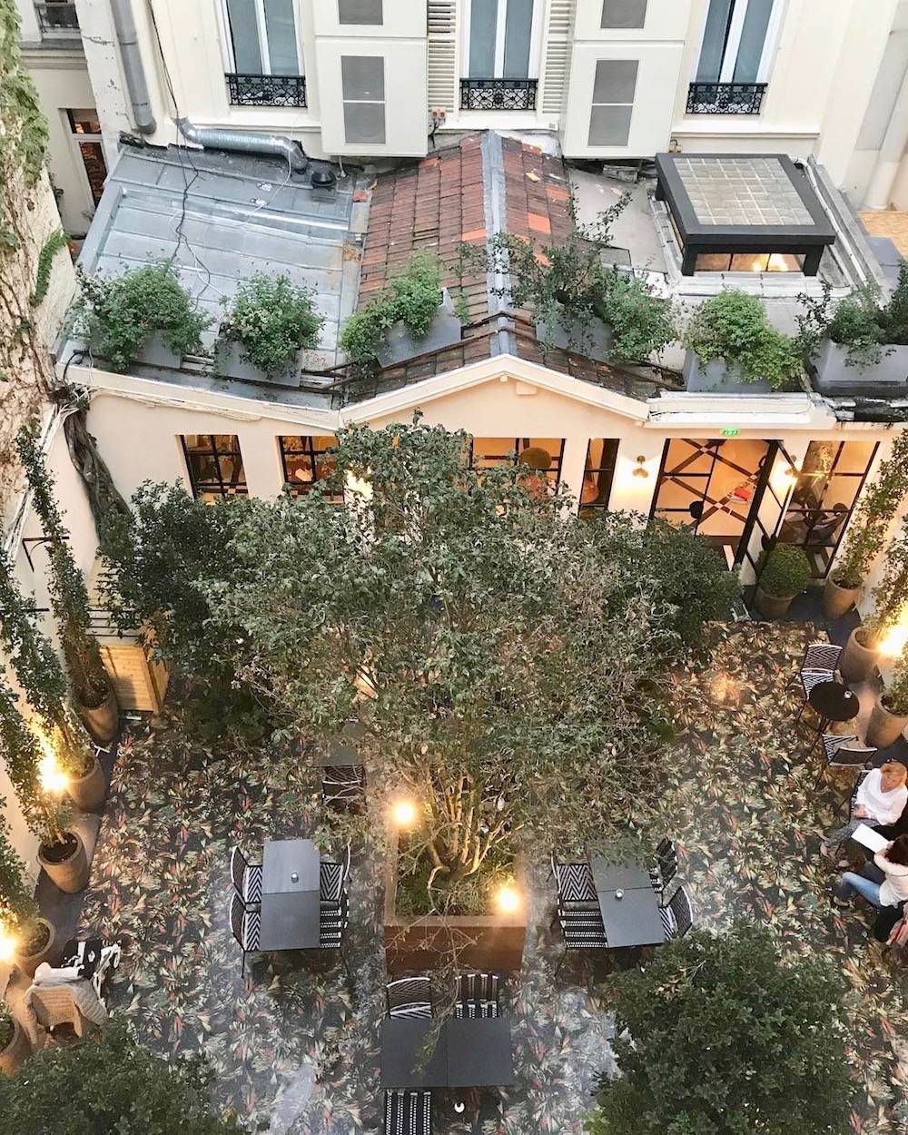 hôtel bienvenue staycation jardin intérieur