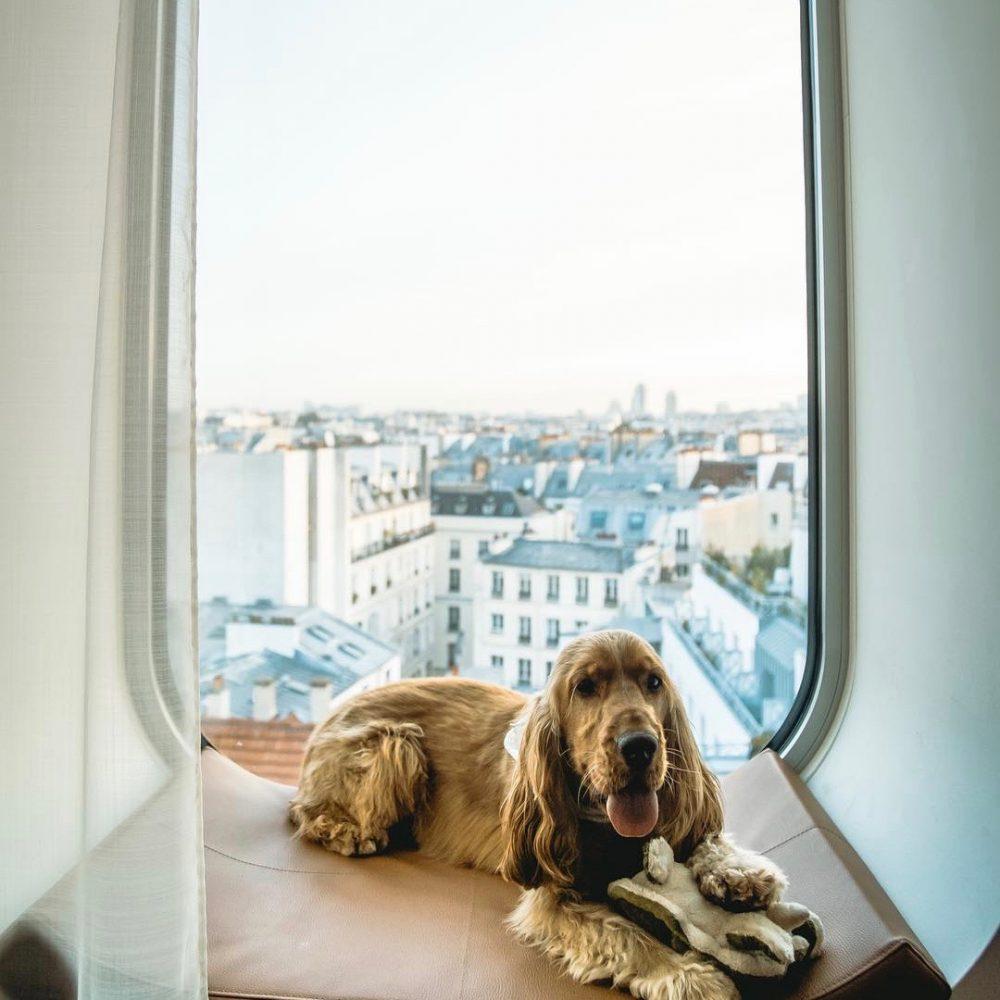 hotel 5 étoiles paris vue panoramique